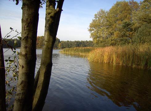 Badestelle Neuenkirchener See